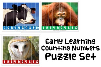 NUMBER SEQUENCING MATH PUZZLE ACTIVITY autism speech thera