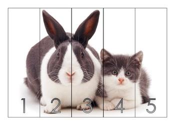 NUMERICAL ORDER PUZZLES