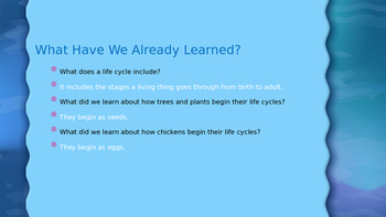 Engage NY:  Module 6 - Lesson 7:  The Life Cycle of a Frog