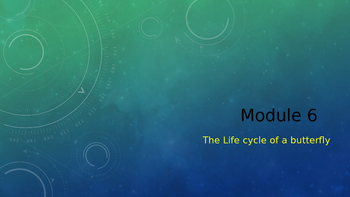 Engage NY:  Module 6 - Lesson 8:  The Life Cycle of a Butterfly