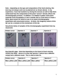NY State Biology Lab Guide - Relationships and Biodiversity