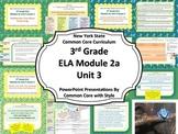 NYS 3rd Grade ELA Common Core Module 2A Unit 3 Bundle