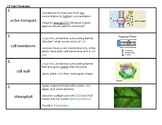"NYS Biology or Living Environment ""Introduction to Cells"""