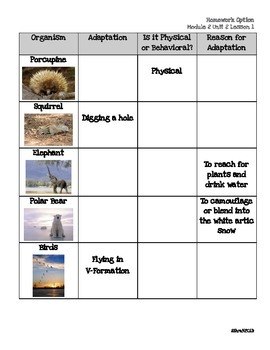 NYS ELA Expeditionary Learning Module2A Unit2 Lesson1 Differentiated Instruction