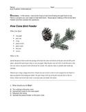 NYS ELA Practice -- Informational Reading -- Pine Cone Bird Feeder