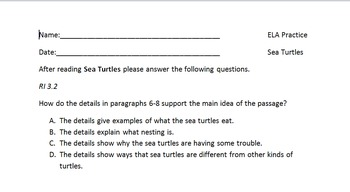 NYS ELA Practice Questions for 3rd Grade