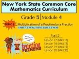 NYS Grade 5 Math Module 4 Topic E (part 2) lessons 17-20