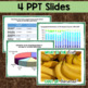 NYS Grade 5 Social Studies Inquiry: Bananas