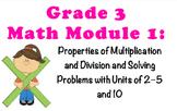NYS MATH MODULE 1 LESSONS (COMMON CORE)