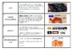 """NYS Regents Earth Science """"Rocks & Minerals"""" Vocabulary Strips"""