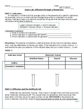 NYS restructured required lab: Diffusion Through a Membrane
