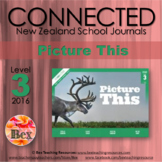 NZ Connected - L3 - 2016 - Picture This