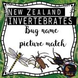 NZ bug names match up