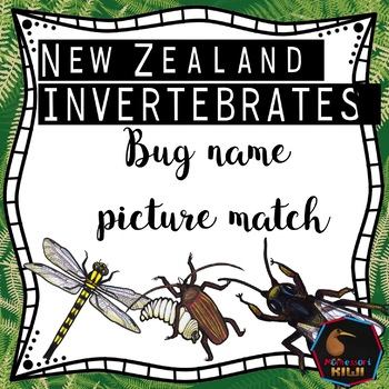 NZ bug names match up