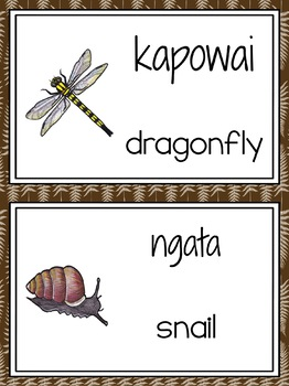 NZ invertebrate word wall
