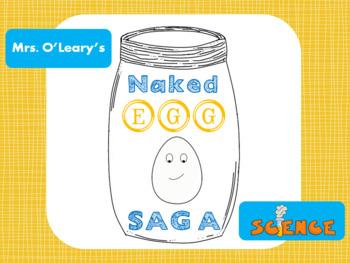 Naked Egg Saga Experiment Pack