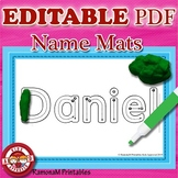 Name Practice EDITABLE PDF