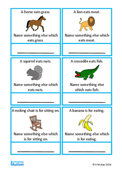 Autism Vocabulary Cards Name Something, Special Education, Speech Therapy