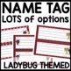 Name Tags (Lady Bug Themed)