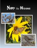 Name the Nouns (Wildlife)