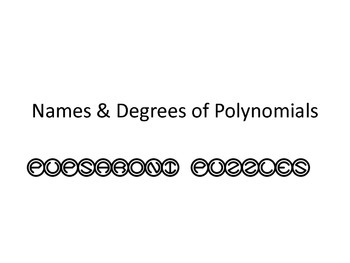 Names & Degrees of Polynomials Scavenger Hunt - PP