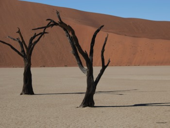 Namibia Landscape Photograph
