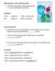 Naming Acids Mini Workbook (answer key)