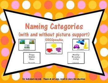 Naming Categories