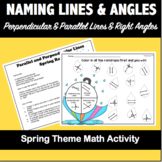 Naming Parallel and Perpendicular Lines AND Angles-Spring Theme