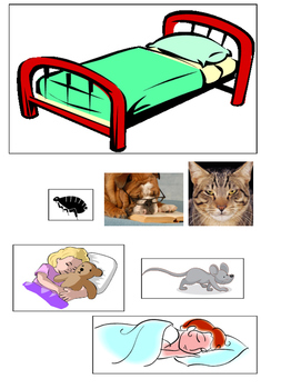 Take a nap in the House Sequencing pictures ESL kindergart