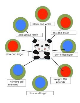 Narrative Nonfiction Activities for Tracks of a Panda