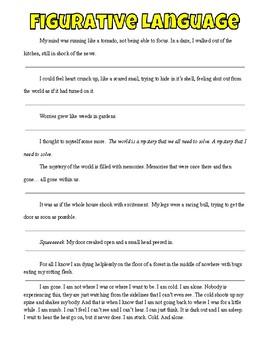 Narrative Strategies: Mentor Texts