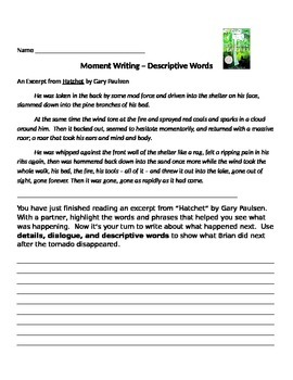 Narrative Writing Analysis