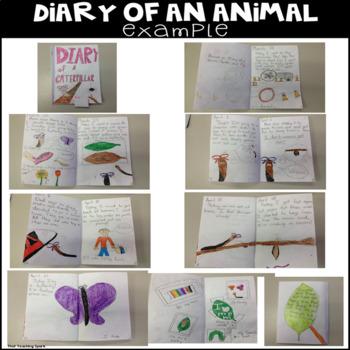 Narrative Writing Diary of an Animal
