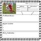 Narrative Writing Story Starters - Sports Theme