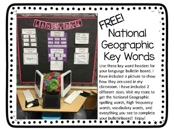 National Geographic Focus Wall