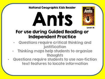 National Geographic Kids Ants Reader GRL M