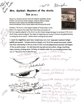 National Geographic Masters of the Arctic Ice Video Worksheet