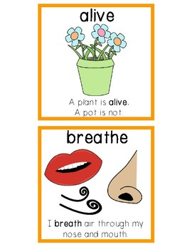 National Geographic Reach for Reading Vocabulary Cards First Grade Unit 2