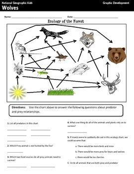 National Geographic Kids Wolves {Nonfiction Comprehension Guide}