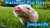 National Pig Day Jeopardy Game (Google Slides)