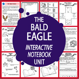 Bald Eagle (US Symbol) Interactive National Symbols + American Symbol Paragraph