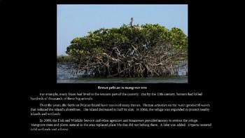 National Wildlife Refuge System PowerPoint for Kids