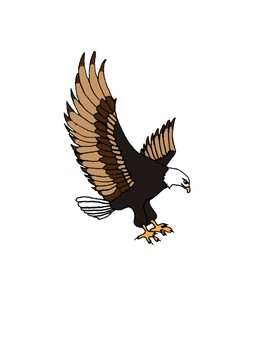 National symbols / America / Patriotic clipart