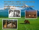 Native American Cultures Powerpoint