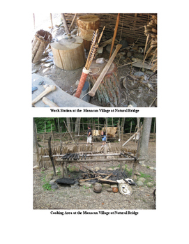 Native American Projects & Activities: Virginia Studies SOLs 2d-2g