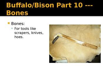 Native Americans - Buffalo Resources