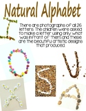 Natural Alphabet Photo Posters