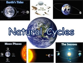 Natural Cycles Lesson & Flashcards - task cards, study guide, 2016 update