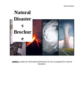 Natural Disaster Brochure